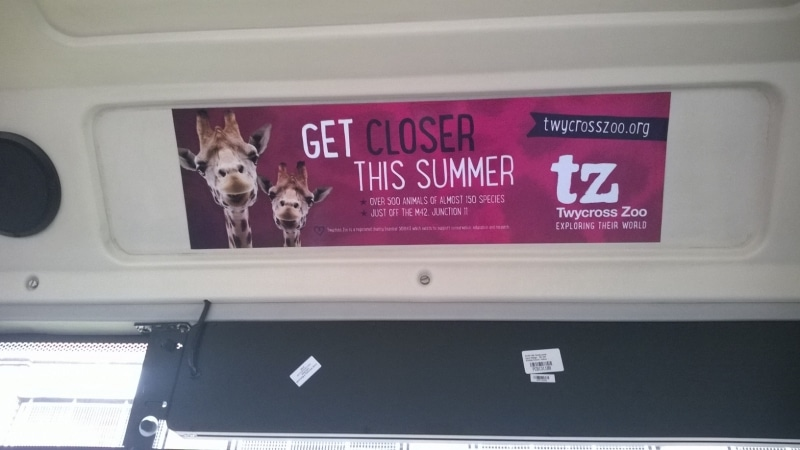 Twycross Zoo - Headliner
